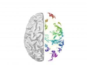 brain-cover2